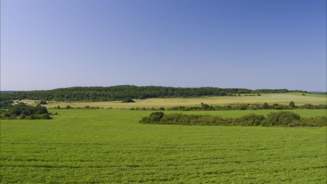 wide aerial shot of green field under blue sky / balvan, bulgaria - bulgarien stock-videos und b-roll-filmmaterial