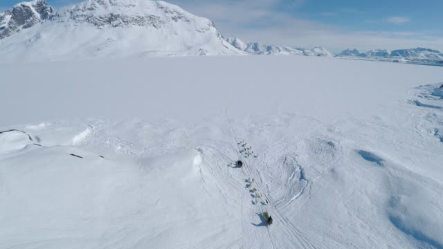 wide aerial views of dogs pulling sleds, greenland - husky stock videos & royalty-free footage