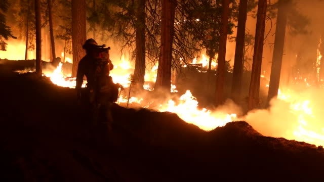 wide angle: firefighter carrying his tools walking next to flames of fire - kalifornien stock-videos und b-roll-filmmaterial
