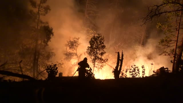 vidéos et rushes de wide angle: firefighter standing close to a raging fire - californie