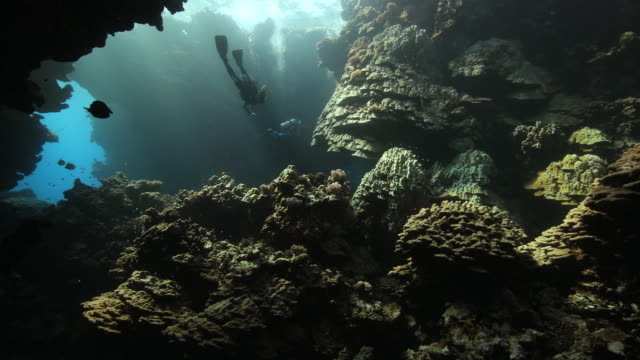 A wide angle shot of a diver swimming the a hard coral reef cavern in the Red Sea Egypt