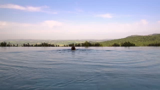 wide angle shot of a girl swimming in an infinity pool overlooking siena, tuscany, italy at daytime - インフィニティプール点の映像素材/bロール