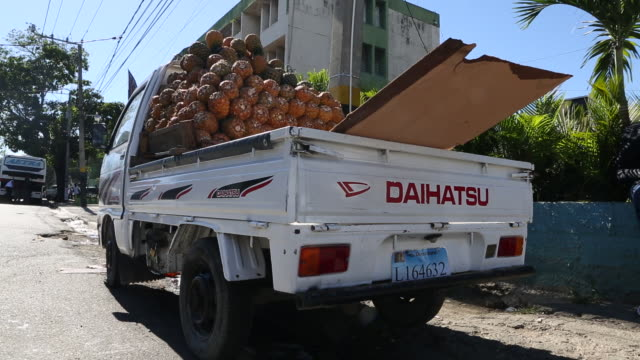 santo domingo dominican republic november 30 2012 a wide angle shot of a white truck that is loaded with pineapples in the trunk in a poor... - hispaniola stock videos and b-roll footage