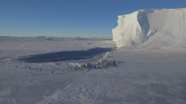 wide angle - antarctica drone stock videos & royalty-free footage