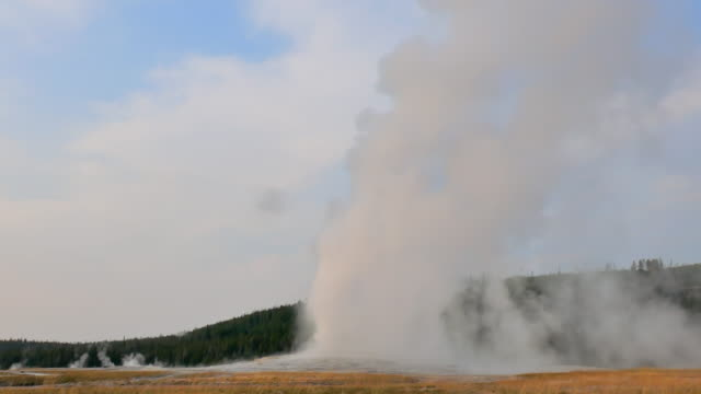wide angle: water and steam shooting out of old faithful geyser - geyser stock videos & royalty-free footage