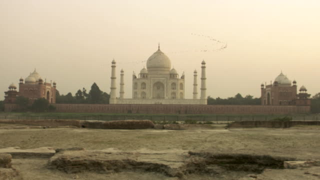 wide crane shot moving upwards to reveal a v formation of birds flying over the taj mahal, india. - taj mahal stock videos and b-roll footage