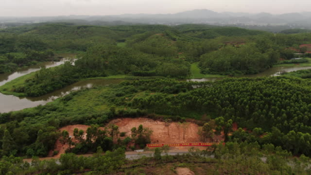wide drone shot of a pit where pigs infected with african swine fever are buried in longtan town, bobai county, guangxi province, china. - healthcare and medicine or illness or food and drink or fitness or exercise or wellbeing stock videos & royalty-free footage