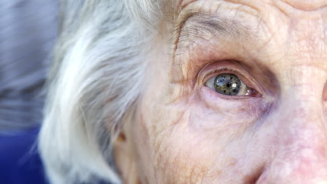 wide eyed beautiful, sharp, intelligent elderly senior caucasian woman's unique speckled pretty eyes and face in the summer outdoors - staring stock videos & royalty-free footage