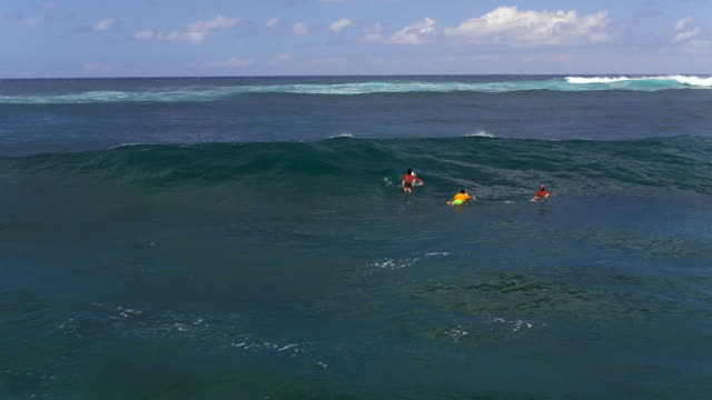 wide fly over aerial shot of three surfers paddling over a wave - kahuku stock videos & royalty-free footage
