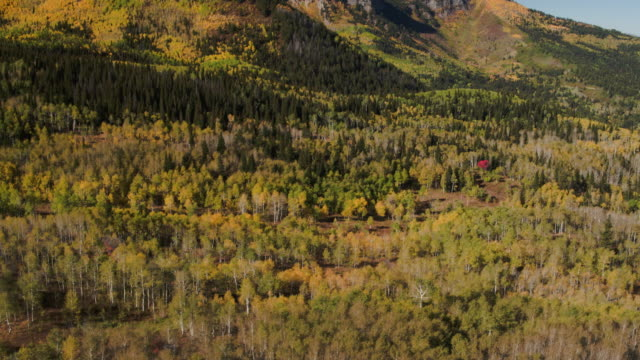 Wide high angle panning shot of autumn trees near mountain / Wasatch Mountains, Utah, United States