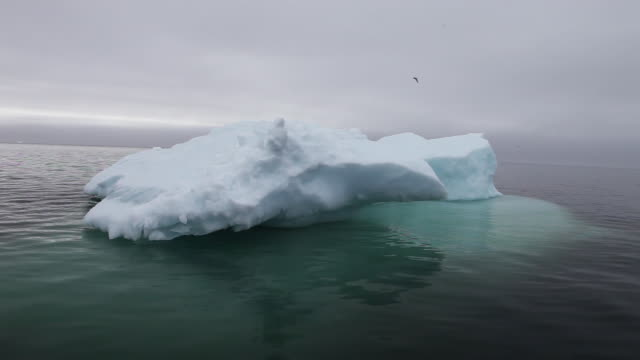 wide, iceberg floats in greenland - wide stock videos & royalty-free footage