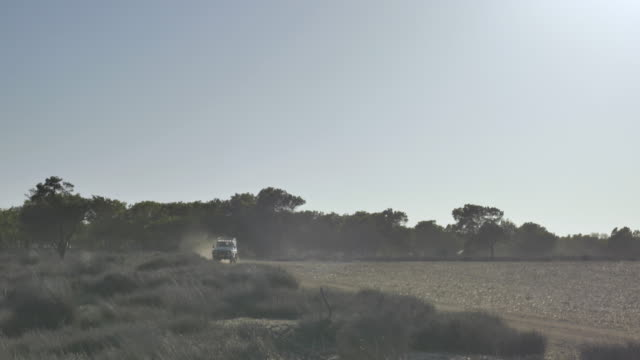 wide, land rover drives on rural south african savannah - wilderness stock videos & royalty-free footage