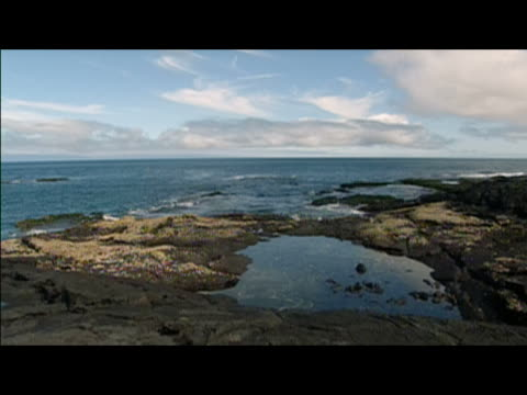 wide locked down shot of coastline / galapagos islands - letterbox format stock videos & royalty-free footage
