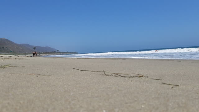 wide low angle on mussel shoals beach a coastal unincorporated community in ventura county, california, a few people in the water and on the beach, - 低い点の映像素材/bロール
