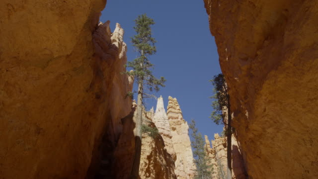 wide low angle panning shot of rock formations in narrow canyon / bryce canyon national park, utah, united states - bryce canyon stock videos and b-roll footage