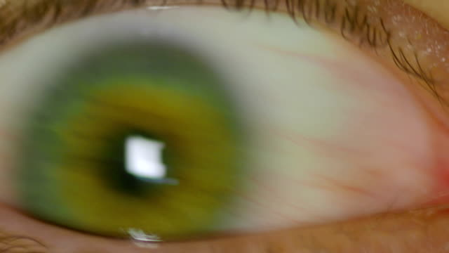 wide open human eye anxiously looking around - retina stock videos and b-roll footage