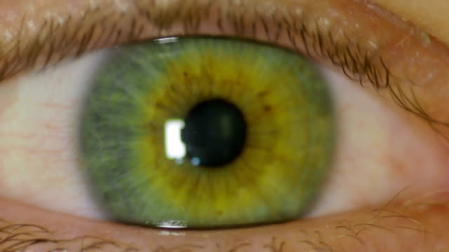 wide open human eye anxiously looking around - eyeball stock videos and b-roll footage
