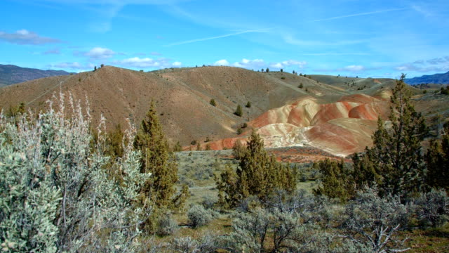 wide painted hills spring sutton mountain john day great basin high desert columbia plateau - plateau stock videos and b-roll footage