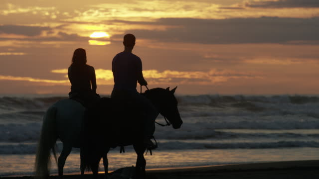 vidéos et rushes de wide panning shot of couple riding horseback on beach at sunset / esterillos, puntarenas, costa rica - jeune couple