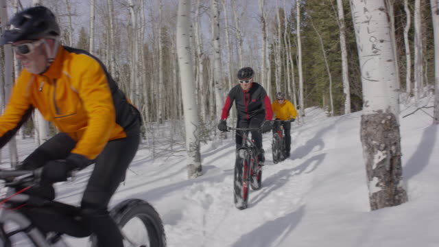vídeos y material grabado en eventos de stock de wide panning shot of friends riding fat bikes in forest / american fork canyon, utah, united states - american fork canyon