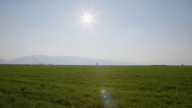 wide panning shot of grass and farmland in bakersfield - wide stock videos & royalty-free footage