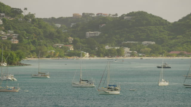 wide panning shot of sailboats in ocean / st. georges, greneda - st. george's grenada stock videos and b-roll footage