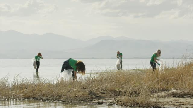 wide panning shot of volunteers collecting garbage at lake / vineyard, utah, united states - environmentalist stock videos & royalty-free footage