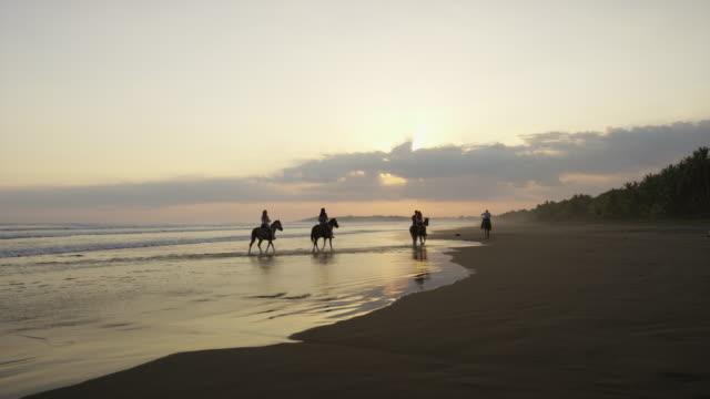 vídeos de stock, filmes e b-roll de wide panning slow motion shot of horseback riders on beach / esterillos, puntarenas, costa rica - montar um animal