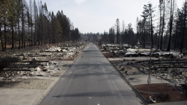 wide, road cuts through wildfire destruction - waldbrand stock-videos und b-roll-filmmaterial