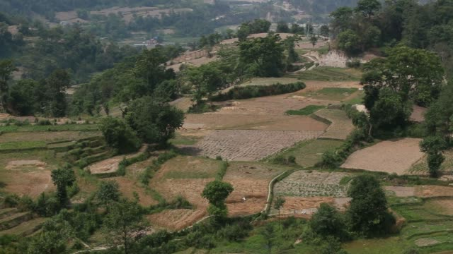 wide shot, a farmer burns wheat stubbles after a harvest in chapagaon, kathmandu valley - stubble stock videos & royalty-free footage