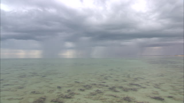 wide shot aerial pan-left - rain falls over shark bay and stromatolites under the water near the shoreline. / australia - shark bay stock videos & royalty-free footage