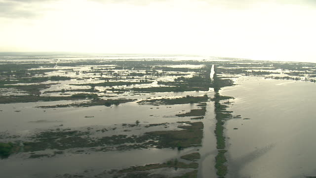 Wide Shot aerial push-out tracking-left - High water covers much of a marsh area in the Mississippi River delta. / New Orleans, Louisiana, USA