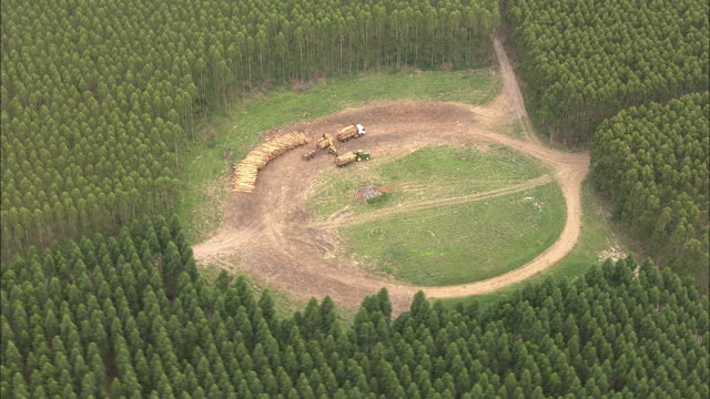 Wide Shot aerial tracking-left - Machinery operates on a clear cut in South Africa. / South Africa