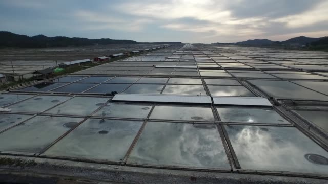 wide shot aerial view of evaporation ponds taken above salt pans at taepyung salt farm, operated by tae pyung salt co., in jeungdo island, sinan,... - evaporation stock videos & royalty-free footage