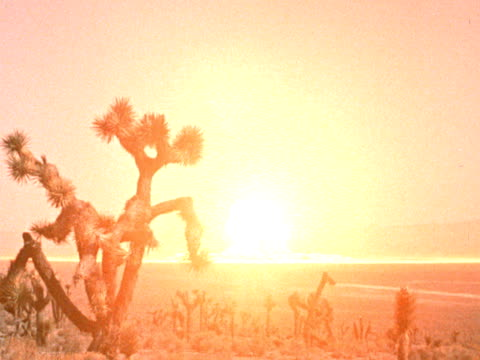 wide shot atomic explosion / mushroom cloud in desert