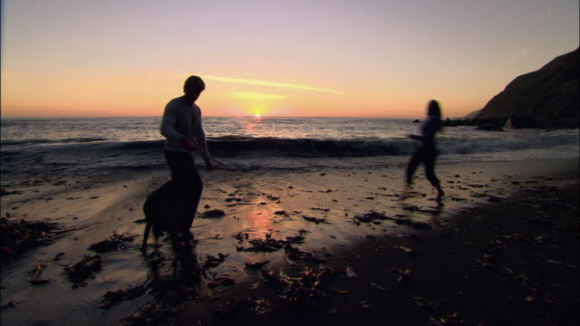 wide shot backlit couple playing fetch with dog on  beach at sunset as tide comes in/ monterey county, california - ragged point stock videos and b-roll footage