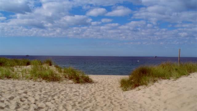 Wide shot beach grass, beach, and horizon/ Provincetown, Massachusetts