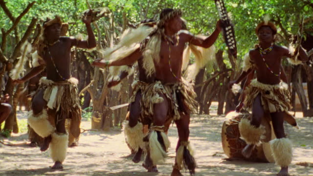 wide shot black zulu men in costumes doing native dance outdoors / durban, kwazulu-natal, south africa - etnia video stock e b–roll
