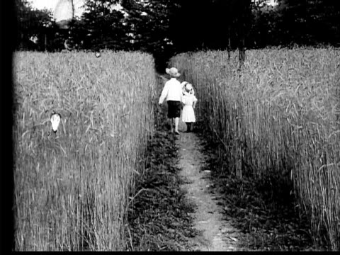 1910 b/w wide shot boy and girl waking through path in field of wheat as figure moves toward them  - 1900 1909 stock-videos und b-roll-filmmaterial