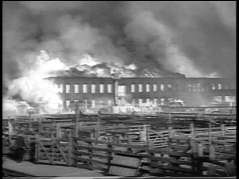 vidéos et rushes de b/w 1934 wide shot buildings on fire in chicago stockyard / newsreel - 1934