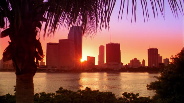 wide shot city skyline and bay at sunset / miami, florida - south beach stock videos & royalty-free footage
