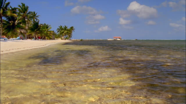 Wide shot clear green waters of Caribbean along beach with pier on horizon / Ambergris Caye, Belize