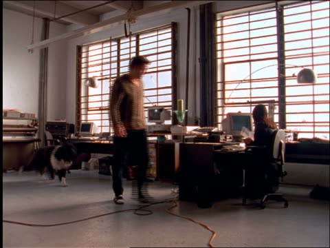 stockvideo's en b-roll-footage met wide shot couple in loft / man gets up from desk + joins woman at her computer / dog follows - loft