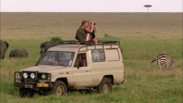 vídeos y material grabado en eventos de stock de wide shot couple on safari looking at animals through binoculars from sunroof of 4x4 / masai mara, kenya - safari