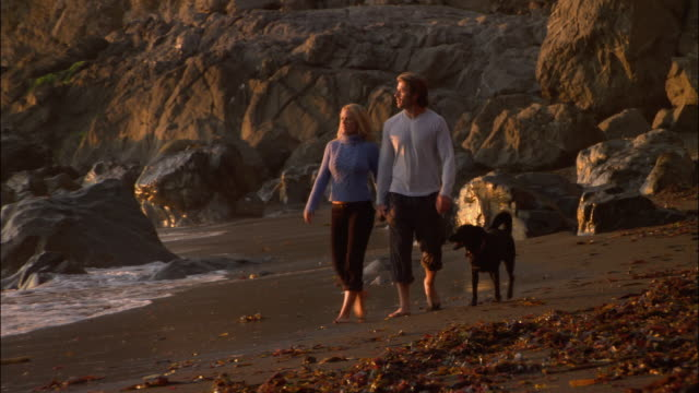 wide shot couple walking on beach with dog/ monterey county, california - ragged point stock videos and b-roll footage