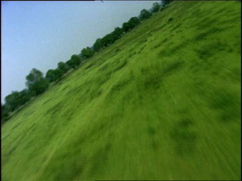 1994 wide shot cows grazing in grassy landscape/ normandy, france - normandy stock videos and b-roll footage