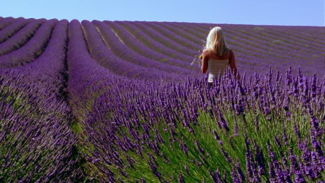 wide shot crane shot blonde woman holding flowers + walking away from cam in field of lavender flowers / France