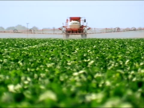 wide shot crop sprayer spraying soybean fields/ brazil - insecticide stock videos & royalty-free footage