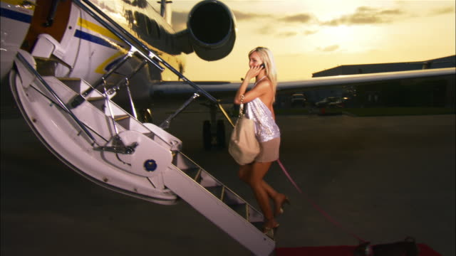 vidéos et rushes de wide shot diva entering private airplane, talking on cell phone, and leading chihuahua up steps / long beach, california, usa - femme soumise