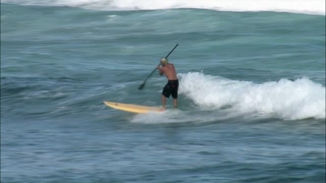 vídeos de stock, filmes e b-roll de wide shot extreme surfing world champion garrett mcnamara paddle surfing in sea/ oahu, hawaii, usa - só um adulto de idade mediana